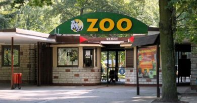 ZOO w Poznaniu otwarte